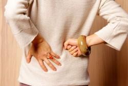 البكتيريا، الحمل، التهاب الكلام، الكلى، علم المسالك البولية