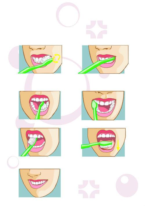 Как да си миете зъбите правилно