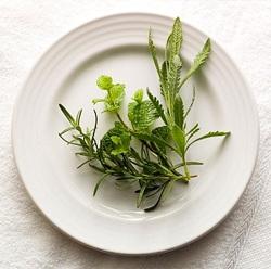 herbs-reduce-appetite