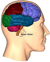 head injury you need to know