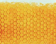 تتراجع القرحة قبل العسل