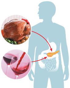 Verdauungsstörungen oder warum leidet die Bauchspeicheldrüse?