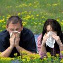 allergy Prick your sorrows