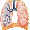 lung abscess symptoms and treatment