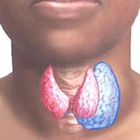 Clinic and diagnosis of nodular goiter