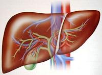 the syndrome of acute liver failure