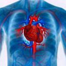 causes of the symptoms and treatment of myocardial dystrophy