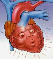 عدم انتظام ضربات القلب من القلب