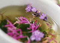lumbago treatment of folk remedies