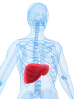 Рак на черния дроб. Симптоми на рак на черния дроб, диагностични методи