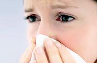 Weide, Angelika und Süßholz gegen Grippe