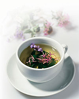 what herbs are treated and which will cripple the myths and reality of herbal medicine
