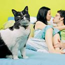 expectant mother and toxoplasmosis