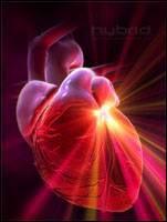 symptoms of rheumatic heart disease