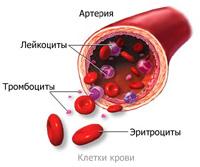Anémia: Okok, típusok, kezelés