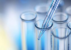 فك تشفير تحليلات التشويه على Gonococcus Nasisser