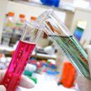 RNA transcript analyzes quantitative hcv