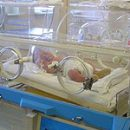 live attraction or history of infant incubators for newborns