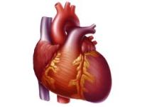 Причини и лечение на сърдечна недостатъчност