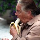 proper nutrition in the elderly a guarantee of good health