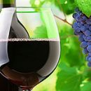 wines are 3 factors that you do not know