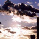 environmental impact on human health