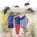 Malaria question answer
